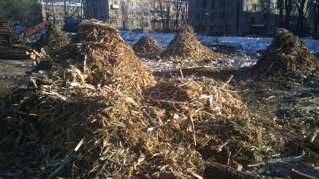 расчистка участка леса под строительство